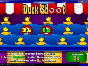 Shooting Ducks!