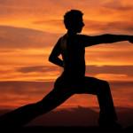 Martial Art like Elliot Waves