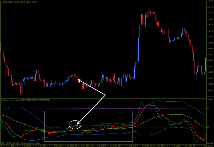 Traders' Dynamic tool for trading preview