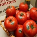 Okane's Home Grown Tomatos