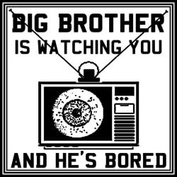 Big Brother Watching You!