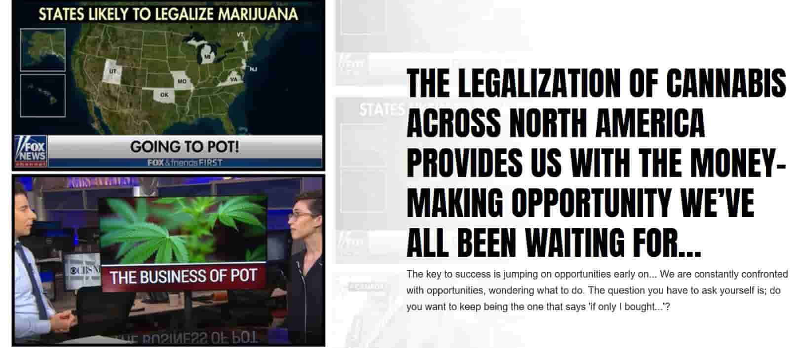 Cannabis Millionaire complaint
